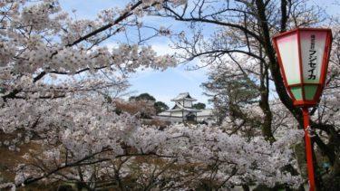 兼六園や石川門で結婚式の前撮りが人気