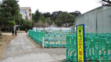 金沢21世紀美術館で芝の張替え作業開始