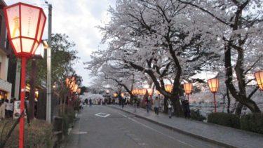 金沢のお花見2018(兼六園・金沢城ライトアップ)
